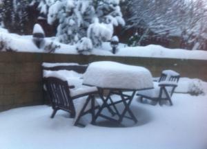 Snow Nebusice